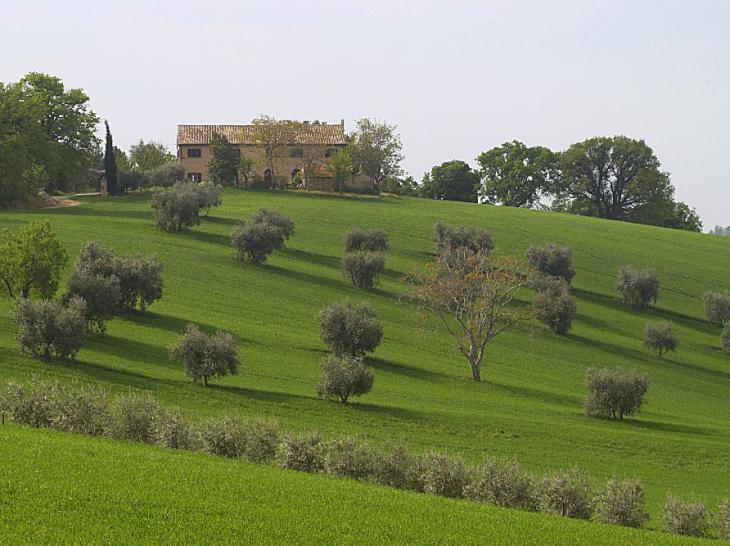 Villa Lisa Le Marche Italie