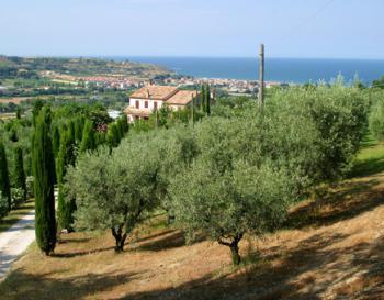 Villa Patrizia le Marche